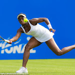 Sloane Stephens - AEGON International 2015 -DSC_2507.jpg