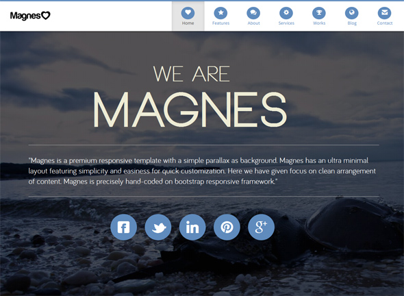 Magnes Parallax WordPress Theme