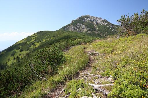 Sivý vrch z východu