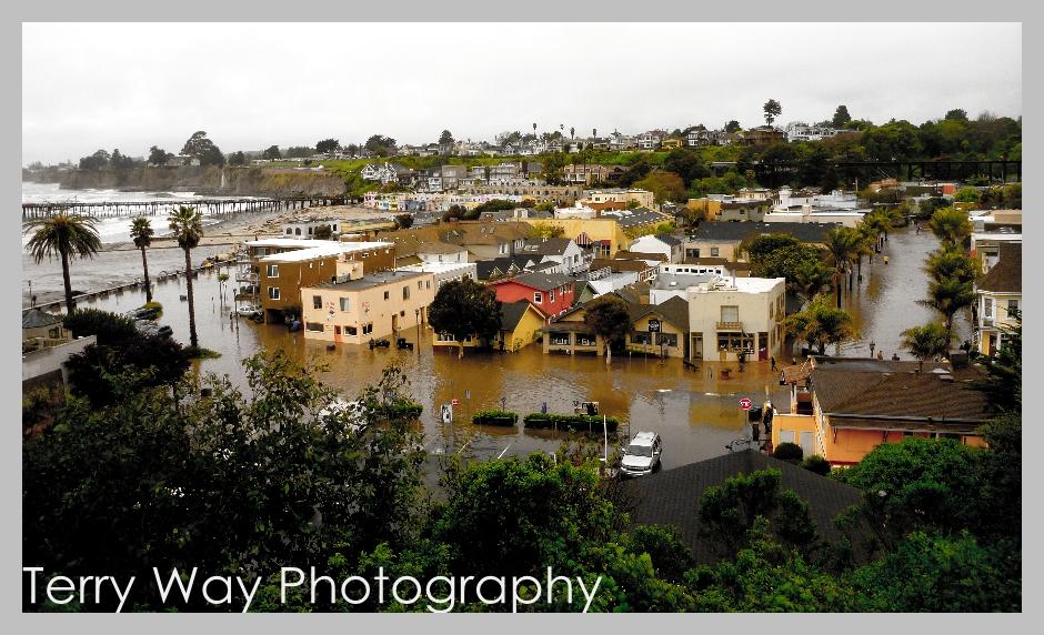 Terry Way Photography Santa Cruz Photographer The Great