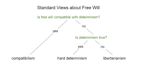 standard views about free will