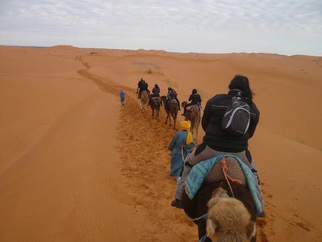 O meu Marrocos Abril 2012 - Página 2 L1010291