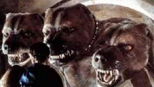 Em 13 de setembro de 1991 o Trio de Ouro encontrava Fofo no corredor proibido