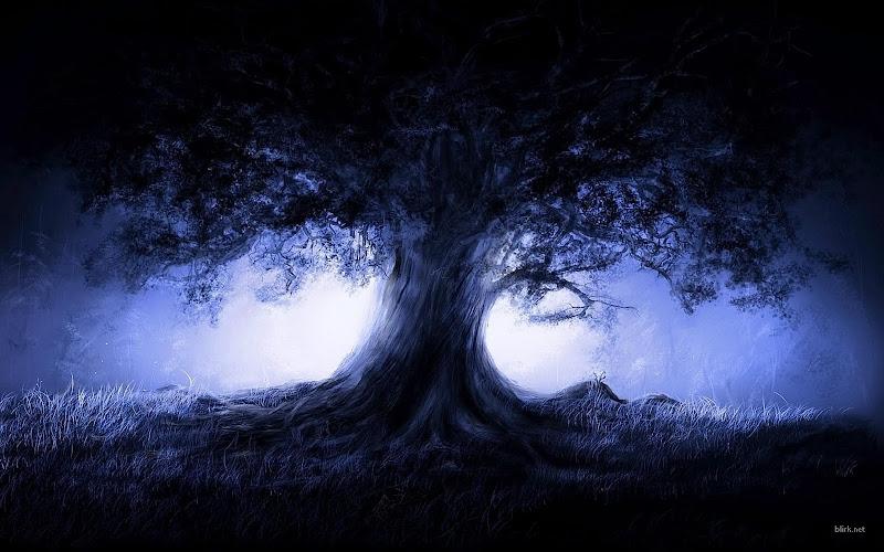 Tree Celtic, Celtic And Druids