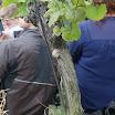 Weinfest2015_083.JPG