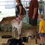 Fort Bend County Fair 2015 - 100_0159.JPG