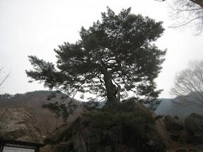 지리산 둘레길 삼화실-대축 구간