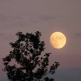 Nacht van Kompas - P1030669.JPG