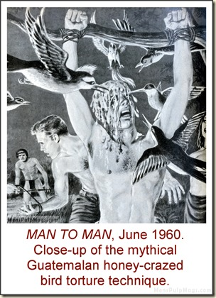 MAN TO MAN, June 1960, torture by birds & honey
