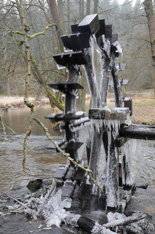 20140101 Neujahrsspaziergang im Waldnaabtal - DSC_9874.JPG