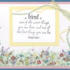 FS1116-C A Friend