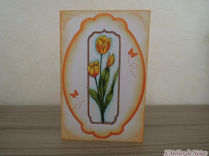 020 - Tulipes
