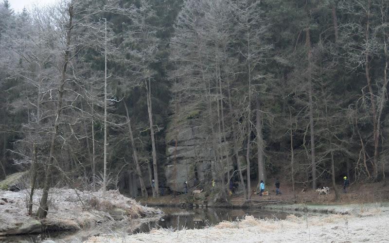 20140101 Neujahrsspaziergang im Waldnaabtal - DSC_9824.JPG