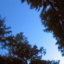 Taborjenje, Lahinja 2006 1.del - IMG_4613.JPG