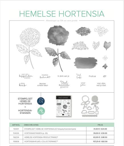 Hemelse Hortensia