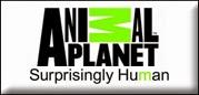 http://www.animalplanet.com/