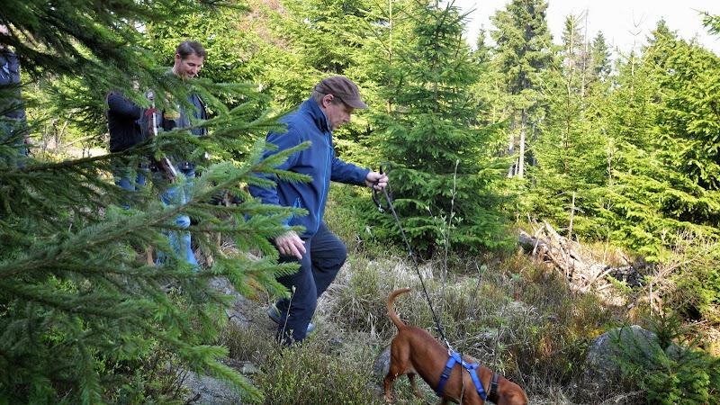 2014-04-13 - Waldführung am kleinen Waldstein (von Uwe Look) - DSC_0439.JPG