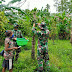 Pererat Persaudaraan Di Tapal Batas, Prajurit Satgas Yonif 125 Bantu Warga Panen Merica