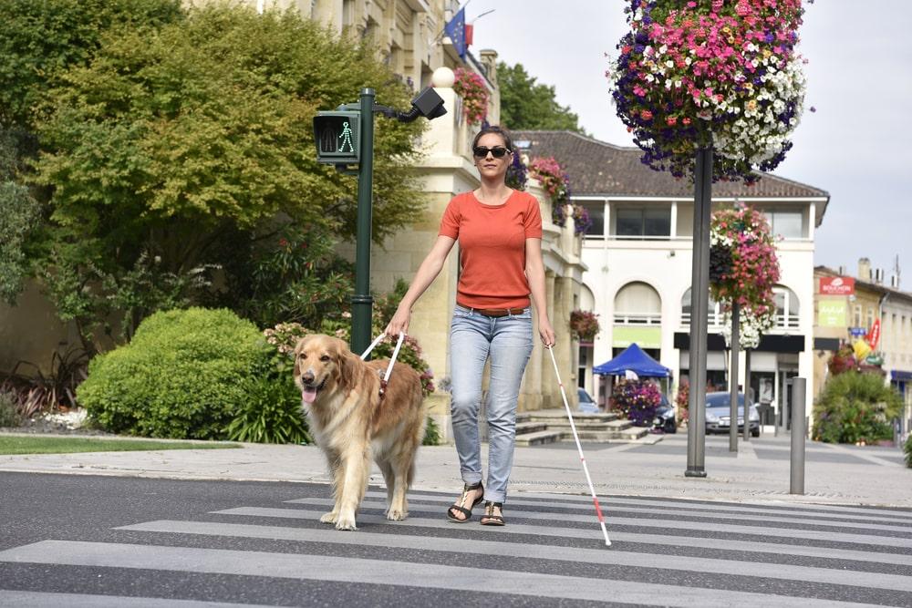 O espaço público deve ser seguro e inclusivo para todos. (Fonte: Shutterstock)
