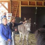 Welpen - Kinderboerderij & Crossbaan - IMG_2484.JPG