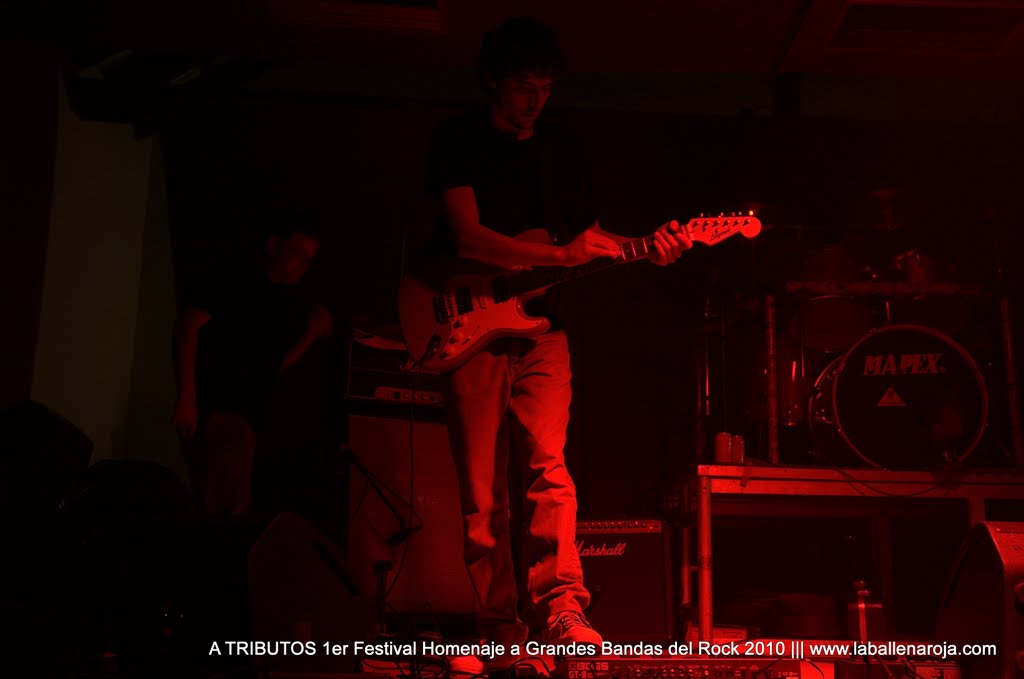 A TRIBUTOS 1er Festival Homenaje a Grandes Bandas del Rock 2010 - DSC_0088.jpg
