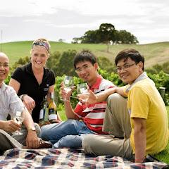 2011 02 25 Adelaide Hill - jh_7537.jpg