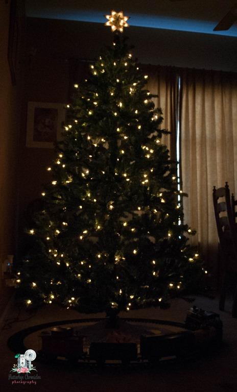 [Christmas+trees-4%5B4%5D]