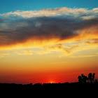 sunset_5142012_2_web.jpg