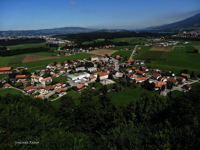 passeando - Passeando pela Suíça - 2012 - Página 15 DSC05722