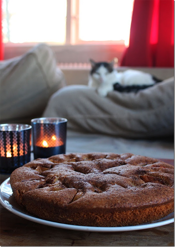 Äppelkakan är uppdukad framför vår soffa med en katt.