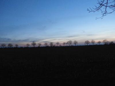 Abendstimmung in Absdorf