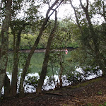 Lane Cove river (oppersite Fairylands) (55829)