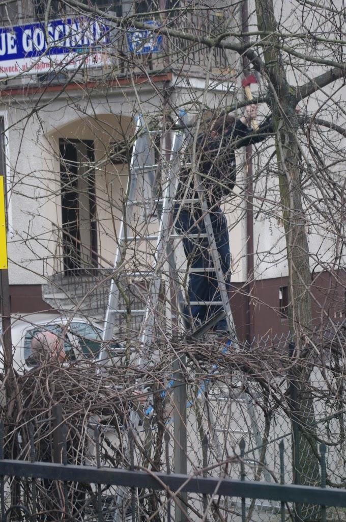 Belsk - Świerk 2011 (Kiń) - PENX2134.jpg