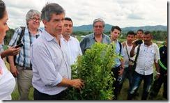 """""""Cambiamos la hoja de coca por otros cultivos"""", campesino beneficiado con programa de sustitución"""