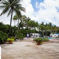 LAAIA 2012 Convention-0832