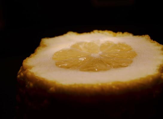Limone in penombra  di ChiaraPuliafito