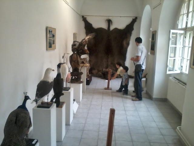 Múzeum - 2012-09-01%2525252016.48.50.jpg
