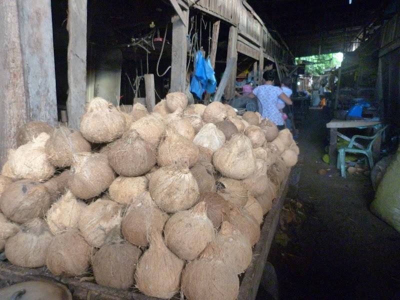 Bohol et Panglao - philippines1%2B1315.JPG
