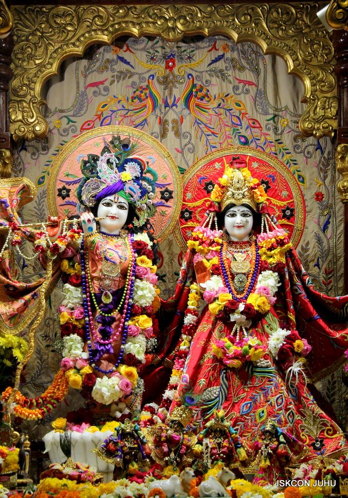 ISKCON Juhu Sringar Deity Drashan on 17th Jan 2017 (24)