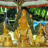 Brahmotsavam - 2014 - Chakra Snanam