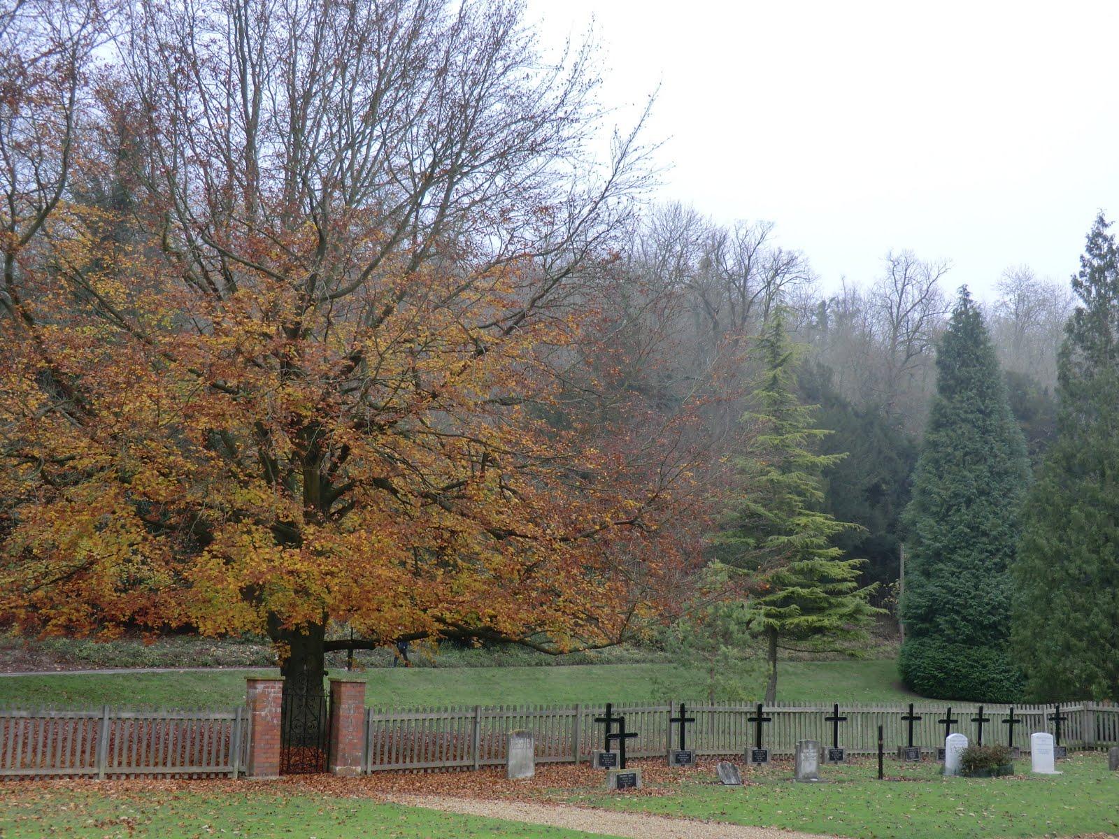 CIMG0309 Nun's cemetery, Woldingham School