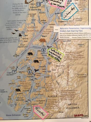 Team Tizzel Alaska Ketchikan Misty Fjords and Seaplane Tour