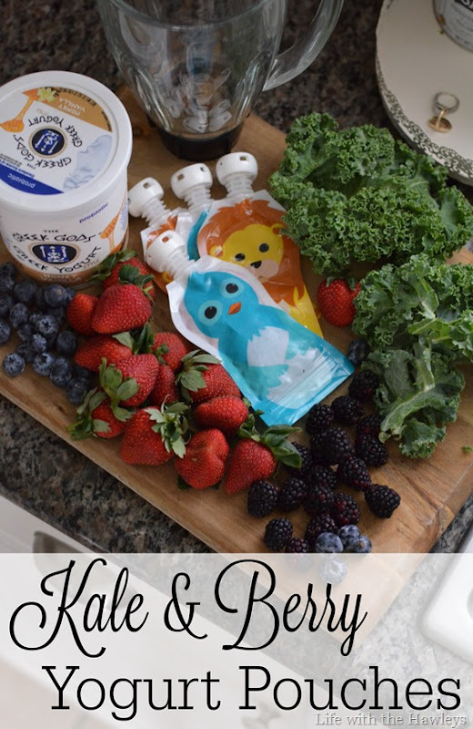 Kale & Berry Yogurt Pouches
