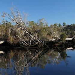 Fowl  River Habitat Restoration