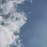 0134-IMG_1369 (2)_resize.JPG