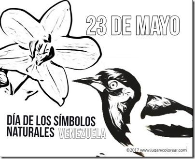 23 mayo venezuela