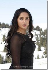 Anushka Shetty singam 3 ii