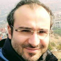 Dilaver Demirel picture