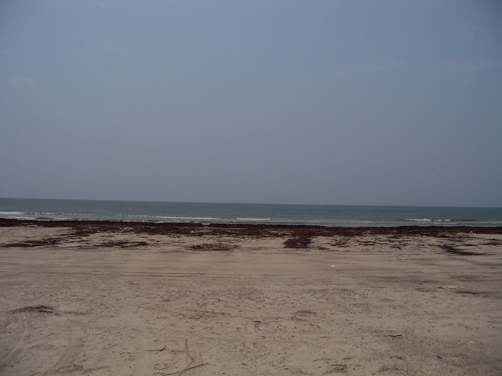 Surfside 2011 - 100_9474.JPG