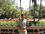 Busch Gardens, Tampa Bay  [2002]